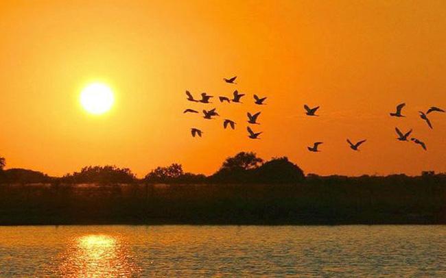 Mơ tháy mặt trời